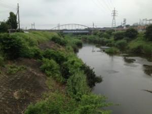 大和波橋が見える__